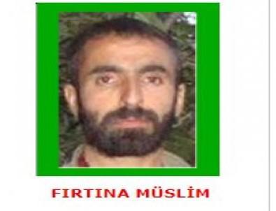 Yeşil kategorideki terörist öldürüldü