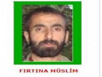 CUDI DAĞı - Yeşil kategorideki terörist öldürüldü
