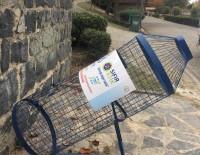 BAYRAMPAŞA BELEDİYESİ - Bayrampaşa'da 'Sepet Sepet Geri Dönüşüm' Dönemi Başladı