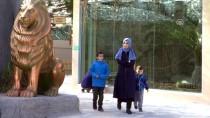 HAYVANAT BAHÇESİ - Metropolün 'Vahşi Kedileri'