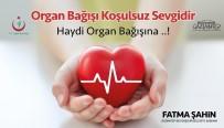 Organ Bağışı Çağrısı
