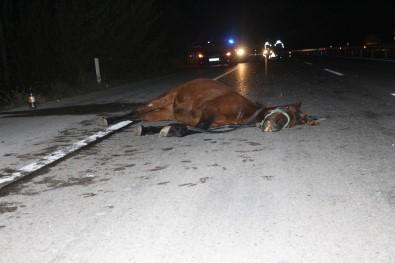 Otomobil Ata Çarptı Açıklaması 2 Yaralı