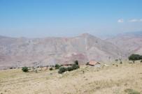 Üç Ev Bulunan Köyün 24 Seçmeni Var