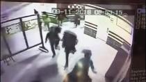 Kocaeli'de, Okula Giren Pitbull Polis Tarafından Vuruldu
