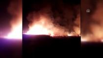 MOGAN GÖLÜ - Mogan Gölü Kıyısında Sazlık Yangını