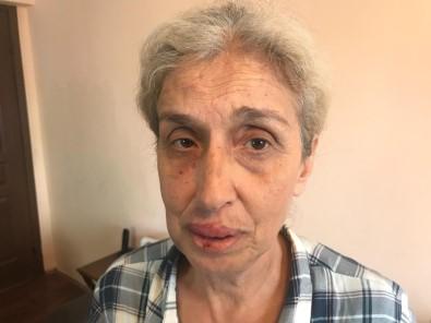 Sokak hayvanlarını beslerken başka kadınların saldırısına uğradı