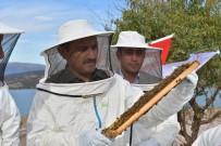 TUNCAY SONEL - Vali, Arıcı Kıyafeti Giydi, Arılı Kovanları Genç Çiftçilere Verdi