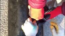 İSTIHBARAT - Yakıt Deposundaki Eroini 'Kurt' Buldu