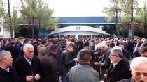 AHMET EŞREF FAKıBABA - AK Parti'nin Şanlıurfa Adayı Beyazgül'e Coşkulu Karşılama