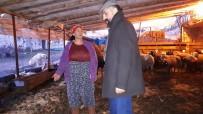 Arguvan'da Örnek Kadın Yetiştiriciye Ziyaret
