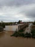 ÜLKER - Kızıltepe'de Sel Fıstık Fidelerine Zarar Verdi