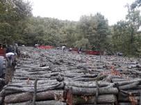 SAMANLıK - Orman Köylüsüne 10 Ayda 2 Milyar 140 Milyon TL Destek