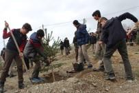 ORMAN MÜDÜRLÜĞÜ - Elazığ'da 'Ağacımla Büyüyorum, Kendi Seramda Üretiyorum' Projesi