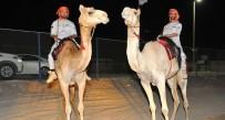 ABU DABI - Abu Dabi Polisi, Develi Devriye Başlattı