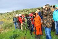 DİLEK YARIMADASI - Aydın'da Kış Turizmi Değil Kuş Turizmi Başladı