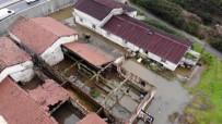 MUSTAFA ARSLAN - Eski Mandırayı Su Bastı, Hayvanlar Telef Oldu