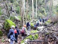 KANYON - Terörden Temizlenen Amanoslara Doğa Yürüyüşü