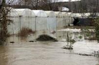ORMAN MÜDÜRLÜĞÜ - Yalova'da Dere Taştı, 50 Sera Sular Altında Kaldı