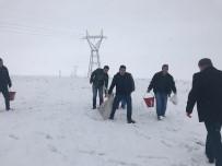 ORMAN VE SU İŞLERİ BAKANLIĞI - Kars'ta Yaban Hayvanlar İçin Doğaya Yem Bırakıldı