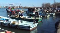 GıRGıR - Balık Rotasını Doğu Karadeniz'e Çevirdi
