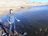 SU ÜRÜNLERİ - Van'daki Su Kaynaklarında Balıklandırma Çalışması
