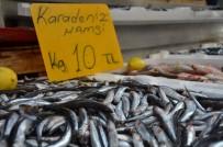 Balıkçılar uyardı