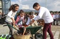 BUCA BELEDİYESİ - Buca'da 10 Bin Çocuk Doğayla Kucaklaşıyor