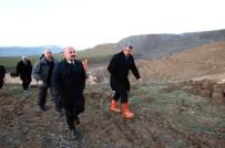 AMASYA VALİSİ - Eski Kömür Sahasına 10 Bin Fidan Dikilecek
