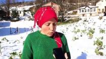 Karadeniz Kadınları, AA'nın 'Yılın Fotoğrafları'oylamasına Katıldı