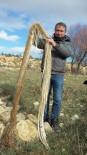 Köyde İçme Suyu Hattının İçinden 4 Metre Ağaç Kökü Çıktı