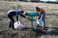 TALAS BELEDIYESI - Talas'ta Yaban Hayvanları Unutulmadı