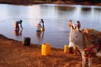 SOMALİLAND - Yiyecek Bulabilmek İçin Ölüyorlar