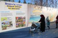 ÇOCUK FESTİVALİ - Beyşehir'de 'Çocuk Oyun Sokağı' Projesi