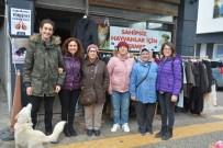 Sinop'ta Sokak Hayvanlarına Destek Kermesi