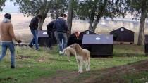 KALENDER - Hayvanseverler Sokak Hayvanlarını Aç Bırakmadı