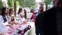 ARNAVUTLUK - Tiran'da Mevlid-İ Nebi Haftası Etkinliği