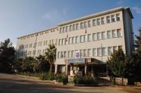 Kilis'te Zeytin Hırsızları Tutuklandı