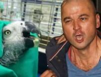 Murat Özdemir'in işkence yaptığı papağan öldü!