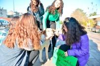 Mardinli Öğrenciler Hayvanlar İçin Mama Kabı Ve Yuva Yaptı