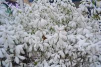 SOĞUK HAVA DALGASI - Balkanlar Üzerinden Yeni Soğuk Hava Dalgası