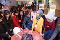ÖĞRETMEN ADAYI - Eğitimin Her Kademesinde Bilim Merkezi Var