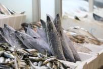 BALIKÇI ESNAFI - Yağışlar Arttı Balık Fiyatları Düştü