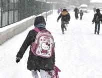 ANKARA VALİSİ - Okullara kar tatili