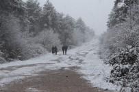KOCAELI ÜNIVERSITESI - Kar Yağışına Hazırlıksız Yakalan Öğrenciler Tatil İstedi