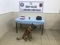 Uyuşturucuyu 'Çevik' Buldu Açıklaması 2 Gözaltı