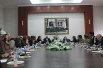 ESNAF VE SANATKARLAR ODALARı BIRLIĞI - Erzurum'da Kadına Yönelik Şiddetle Mücadele İl Eylem Planı Toplantısı Düzenlendi