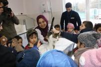 KEMERBURGAZ - Eyüpsultanlı Çocuklar Kemerburgaz Hayvan Kliniği'ni Ziyaret Etti