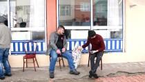 Hayvansever Muhtar, Sevimli Dostlar İçin Sokak Sokak Dolaşıyor