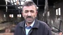 Yozgat'ta Ahır Yangınında 12 Büyükbaş Hayvan Telef Oldu