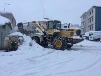 Bingöl'de Etkili Olan Kar, 281 Köy Yolunu Kapattı